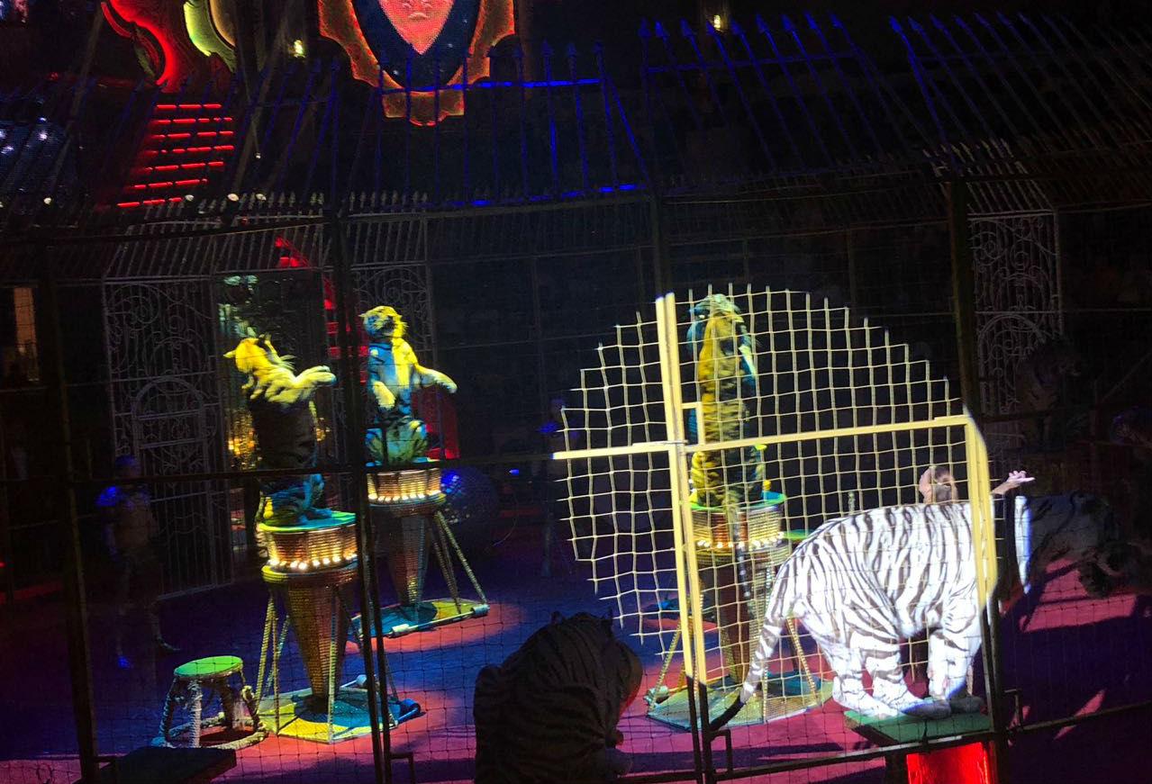 circo ruso 07