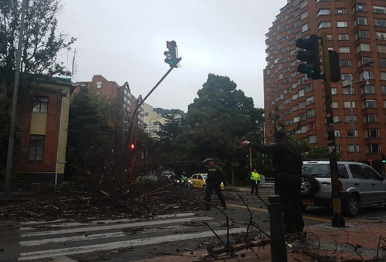 Los fuertes vientos provocaron emergencias en la ciudad
