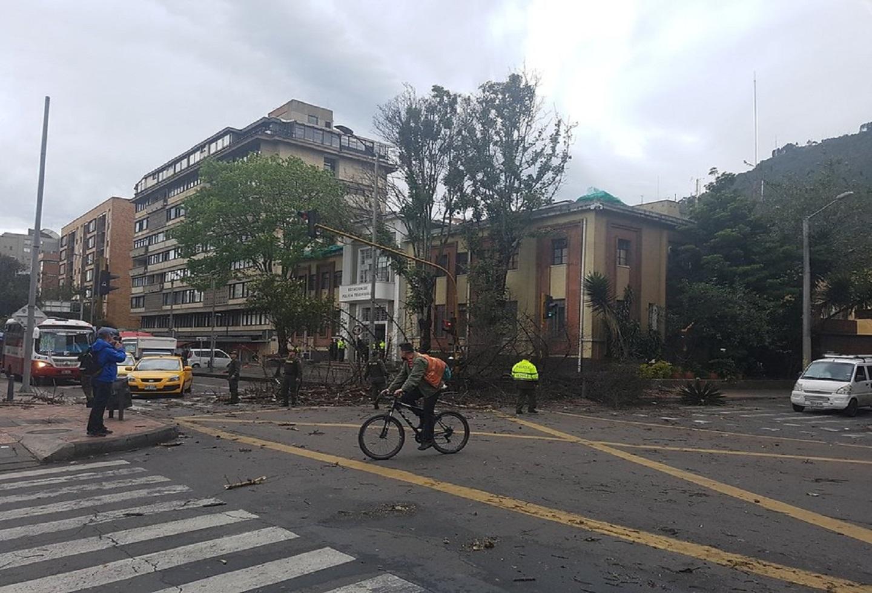 Árboles cayeron en la localidad de Chapinero debido a los fuertes vientos