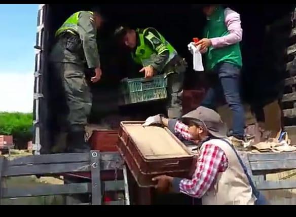 Foto cortesía Policía Nacional