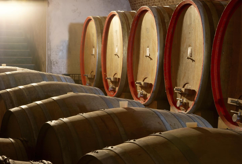producción vino