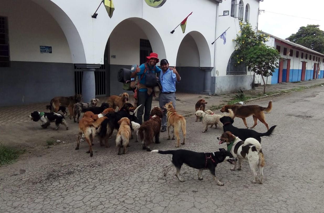 Anialista busca un hogar para 23 perros
