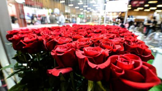 En 12 municipios de Boyacá, se cultivan rosas de calidad de exportación
