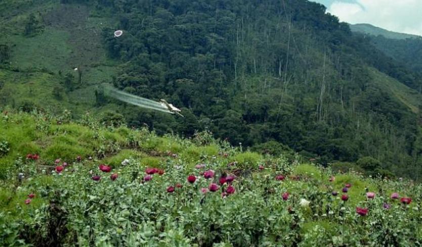 Avioneta de fumigación se accidentó en Maní (Casanare) - RCN Radio