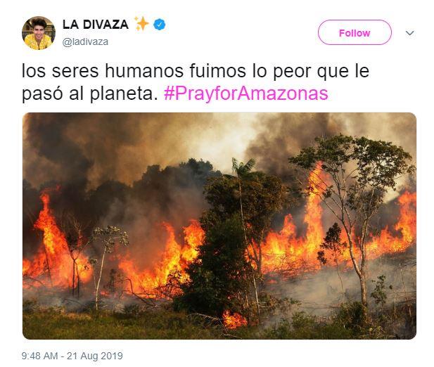 Imagen falsa de incendio en la Amazonia