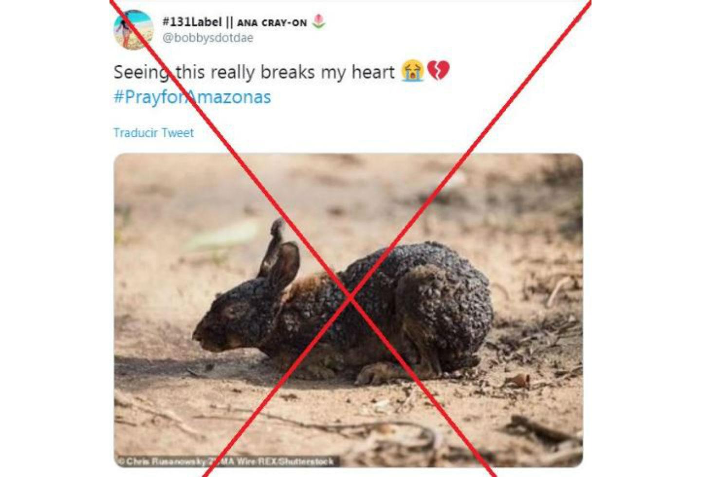 Tuit con imagen falsa de incendio en Amazonia