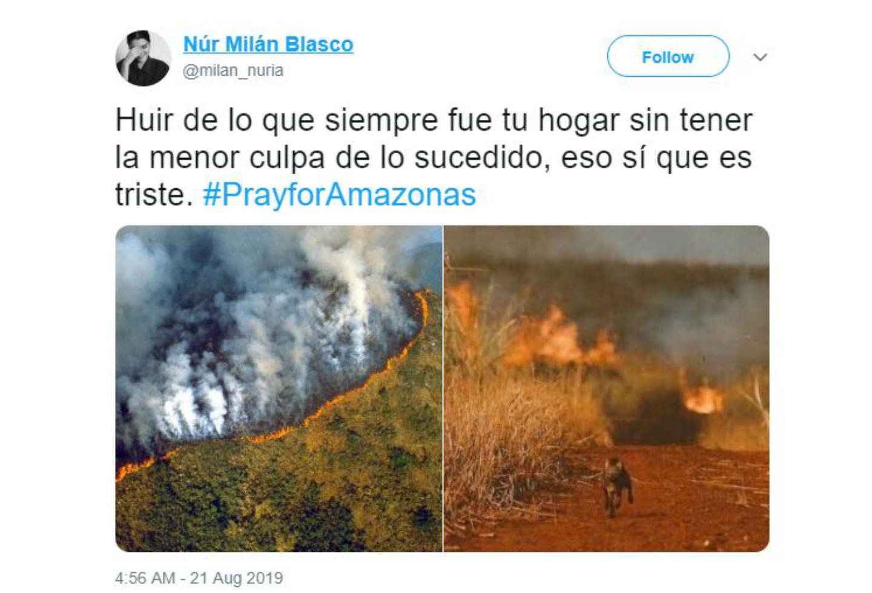Imágenes falsas sobre incendio en la Amazonía