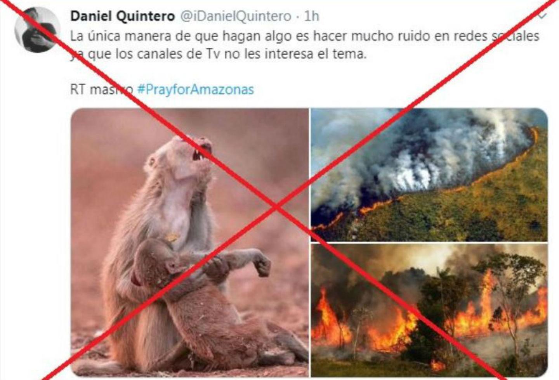 Imágenes engañosas sobre incendio en la Amazonia