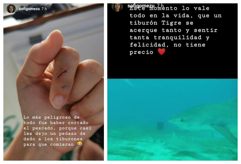 Sofía Gómez nadó con tiburones Tigre