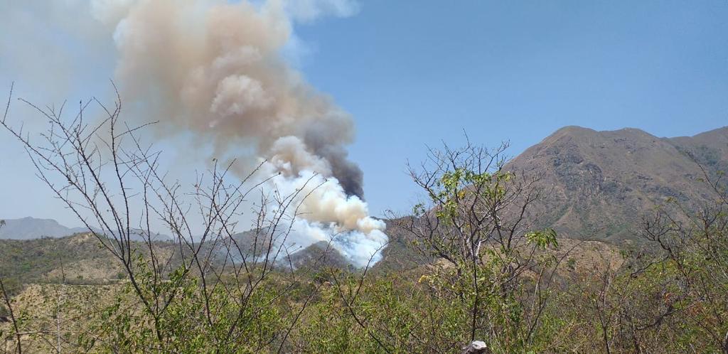 Las llamas consumen cientos de hectáreas de vegetación