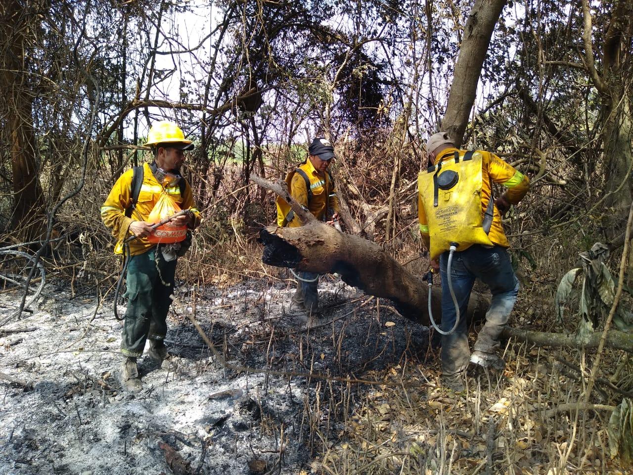 Incendio en Vía Parque Isla de Salamanca.
