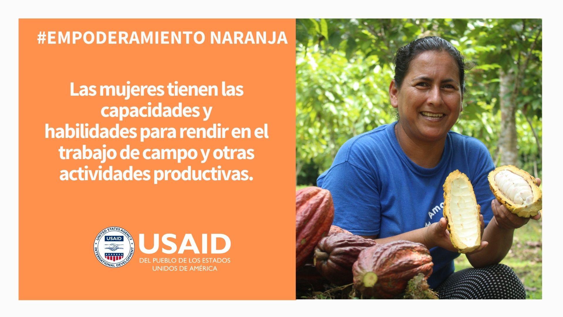 Tip inclusión social 2, USAID