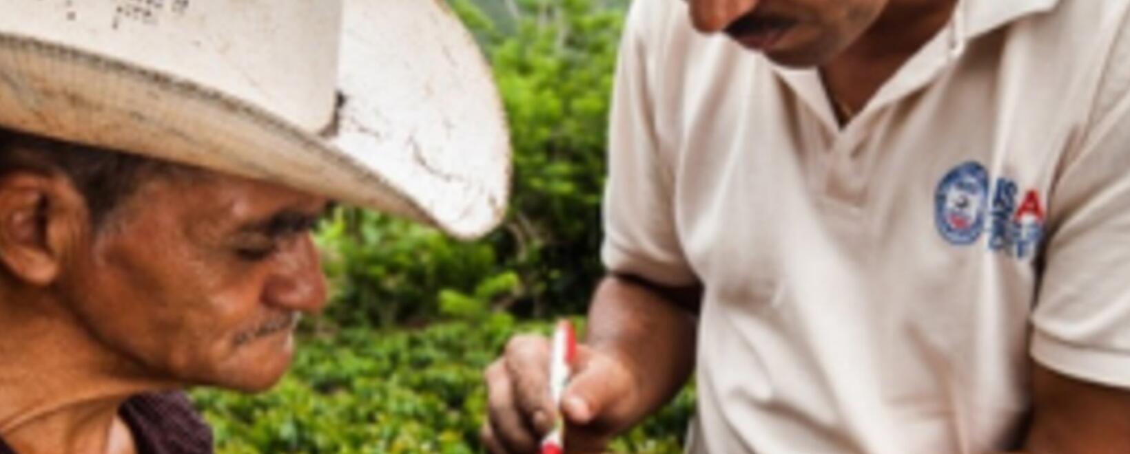 Conozca cómo se realiza el proceso de capacitación de agricultores.