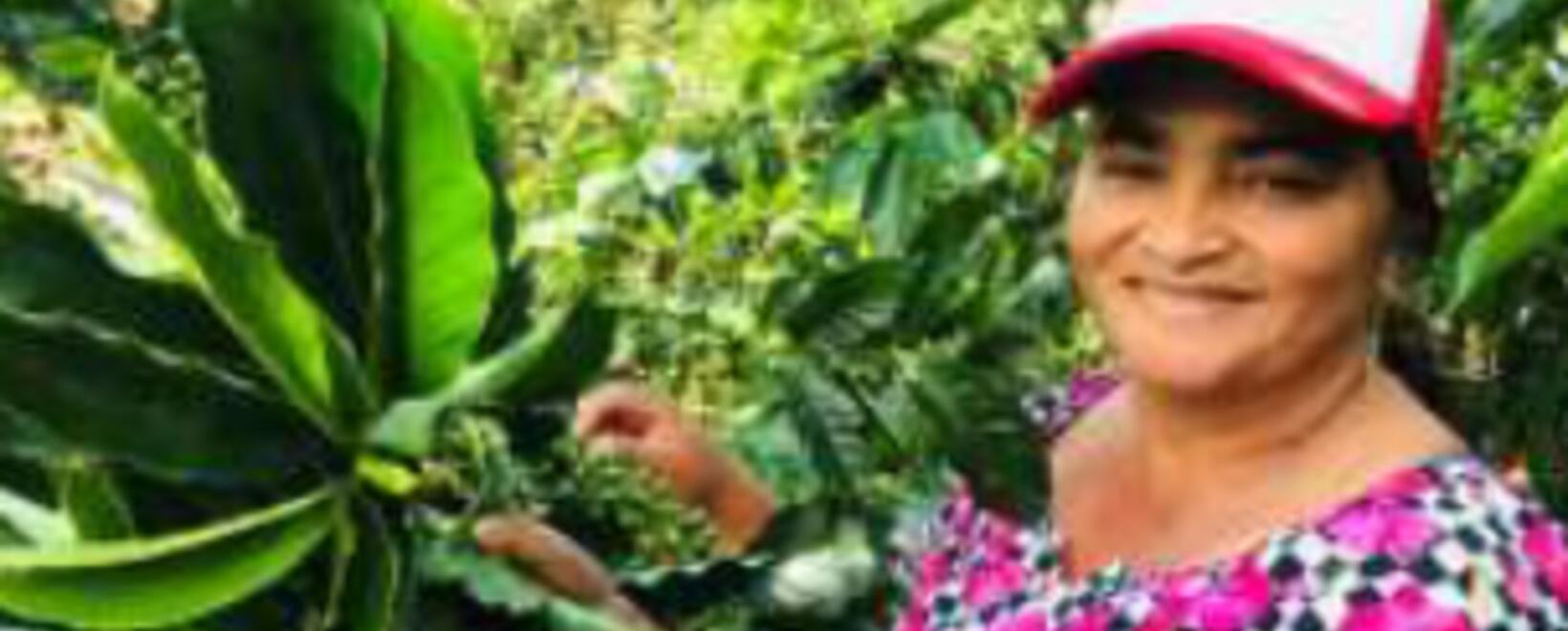 Mujeres productoras - USAID