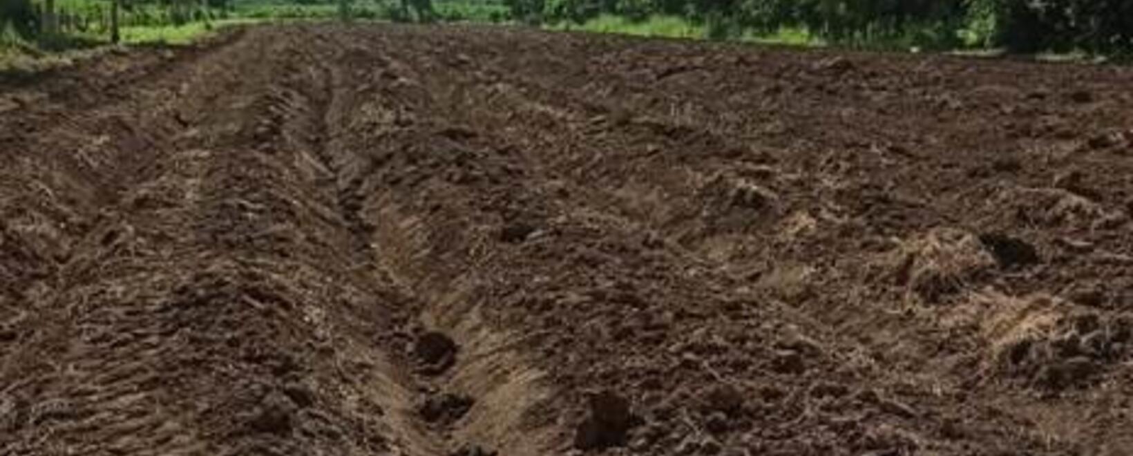 Preparación de suelos 1 - USAID