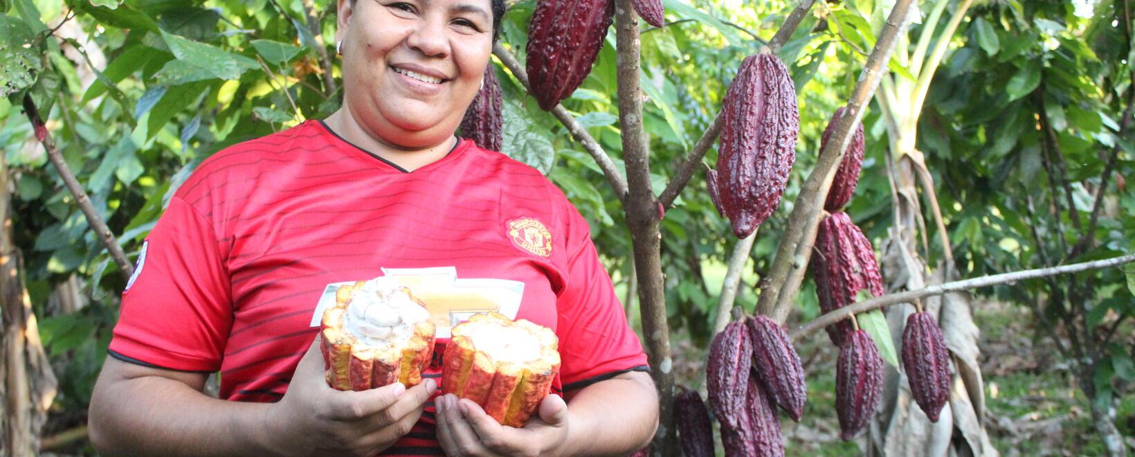 Día internacional del cacao- USAID
