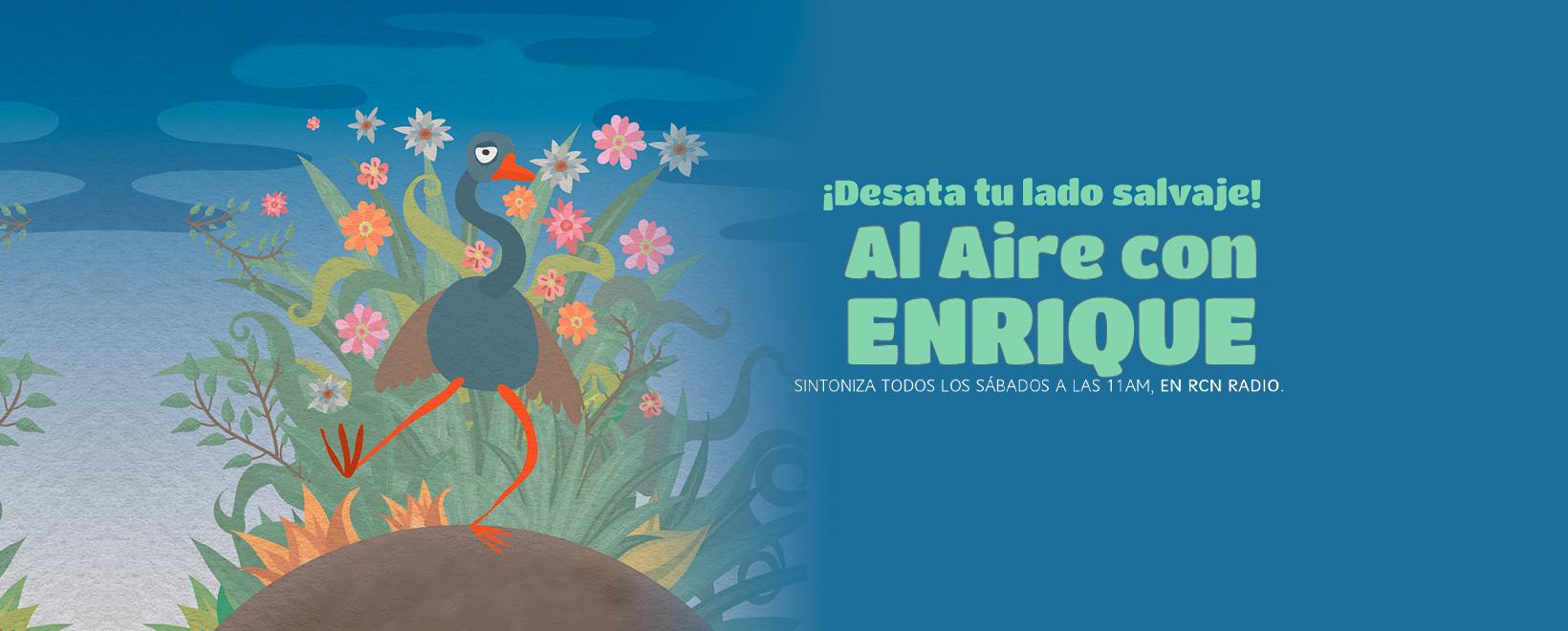 Al aire con Enrique- Capítulo 15: La naturaleza