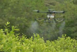 Dron para aspersión de cultivos ilícitos