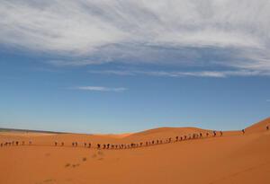 Migrantes en el desierto del Sahara.
