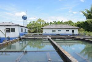 Planta de Agua Potable en Montenegro