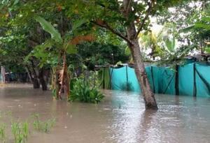 Según los registros de las autoridades, 24 viviendas fueron destechadas por los vientos huracanados.