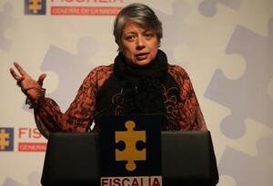 María Paulina Riveros, vicefiscal general