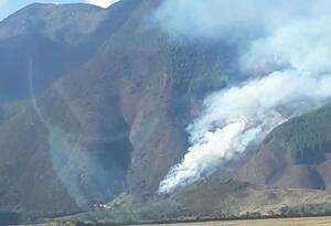 Las llamas alcanzaron entre 16 y 20 metros de altura.