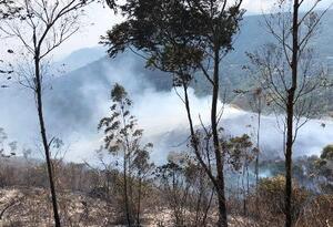Poderoso incendio forestal consumió cerca de 50 hectáreas de vegetación al oeste de Cali