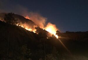 Cuatro cabras murieron incineradas en un incendio forestal en Soatá que permanece activo
