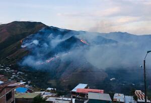 Un incendio forestal consumió varios metros cuadrados en la zona montañosa del barrio Vista Hermosa,