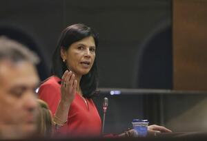 Gloria Alonso, directora Nacional de Planeación, en el Congreso