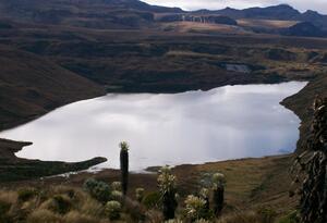 Sistema de Humedales Laguna del Otún