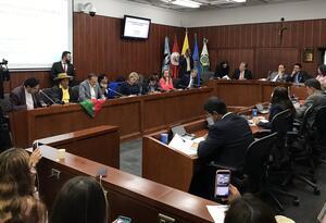 Comisión segunda de Senado en debate de control político al Gobierno