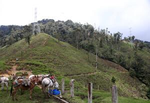 Minas antipersonales en Colombia