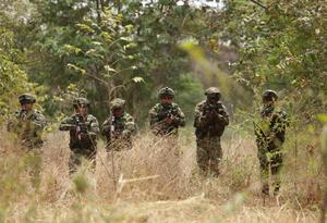 Combates entre el Ejército y las banda criminales (Imagen referencial).