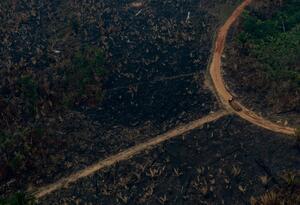 Vista aérea de los incendios en la Amazonía