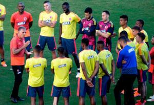 Selección Colombia, Carlos Queiroz