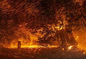 Incendios California