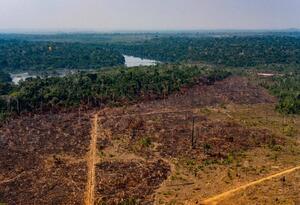 Deforestación en la Amazonia (Municipio de Colniza, estado de Mato Grosso, Brasil)