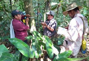 Monitoreo en la Amazonia colombiana.