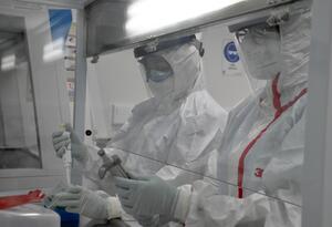 Análisis de muestras en el Laboratorio de Biología Molecular y Biotecnología de la Universidad Tecnológica de Pereira