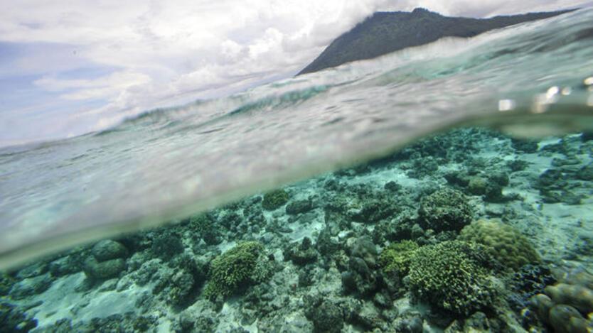 El calentamiento del océano ya tiene consecuencias para la salud humana.