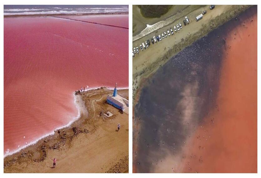 Mar rosado