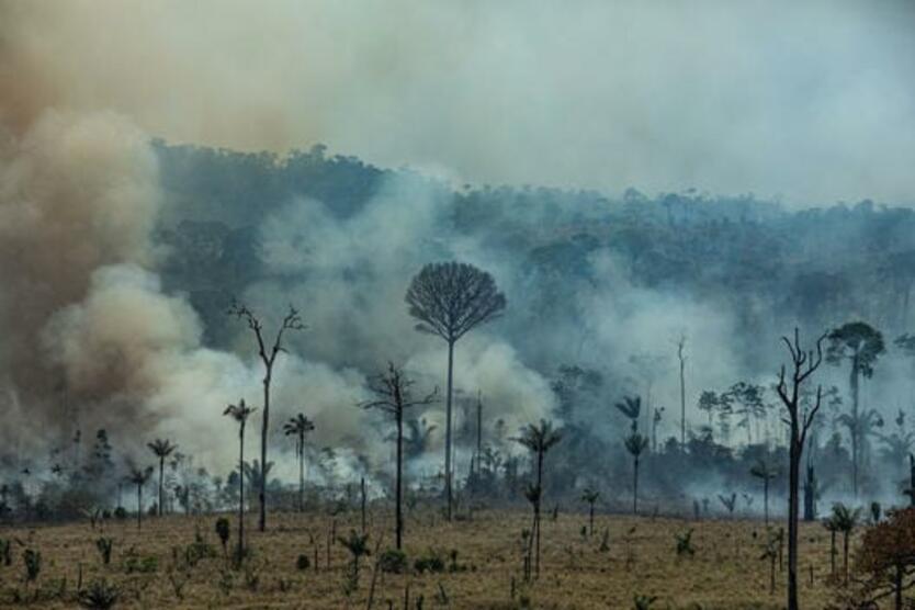 Incendio Forestal en la amazonia brasileña
