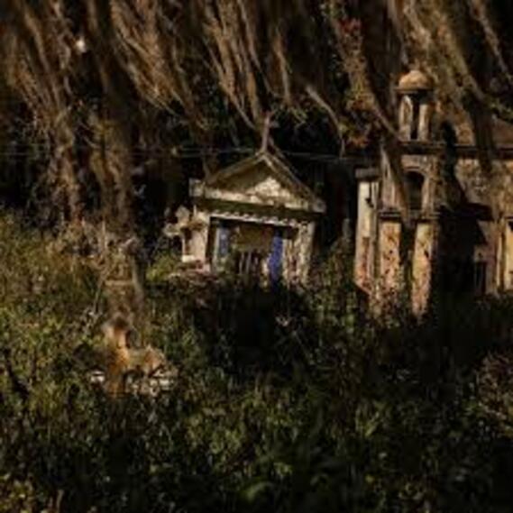 Cementerio de Toche sería postulado como un bien de interés cultural