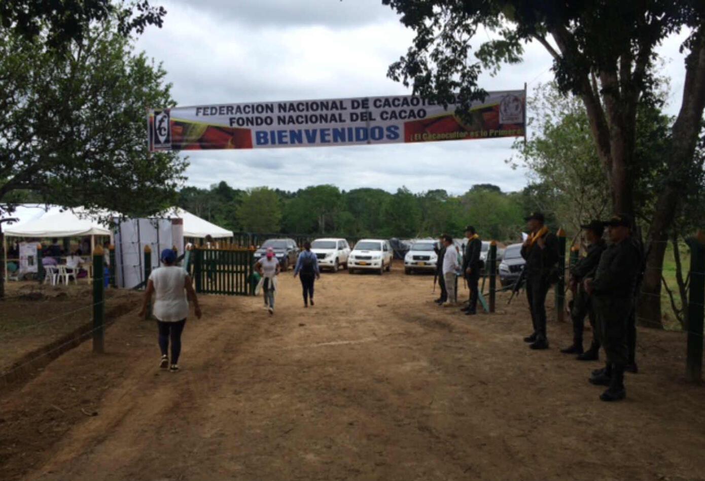 Sustitución cultivos ilícitos en Guaviare