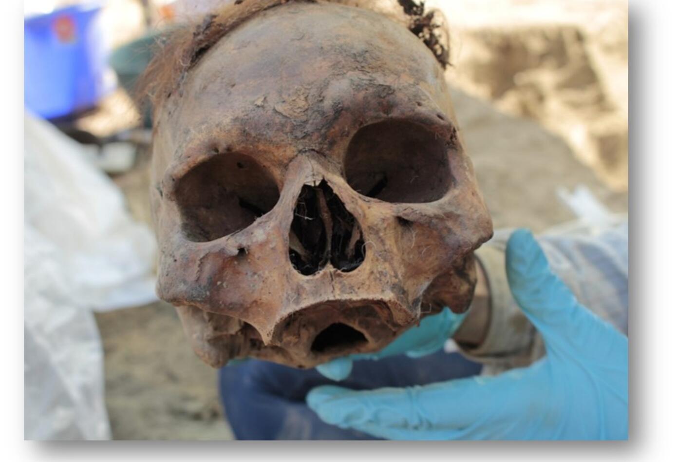 Exhuman 324 restos de cementerios.