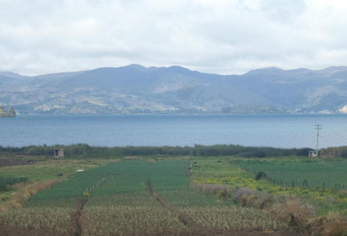 Lago de Tota.
