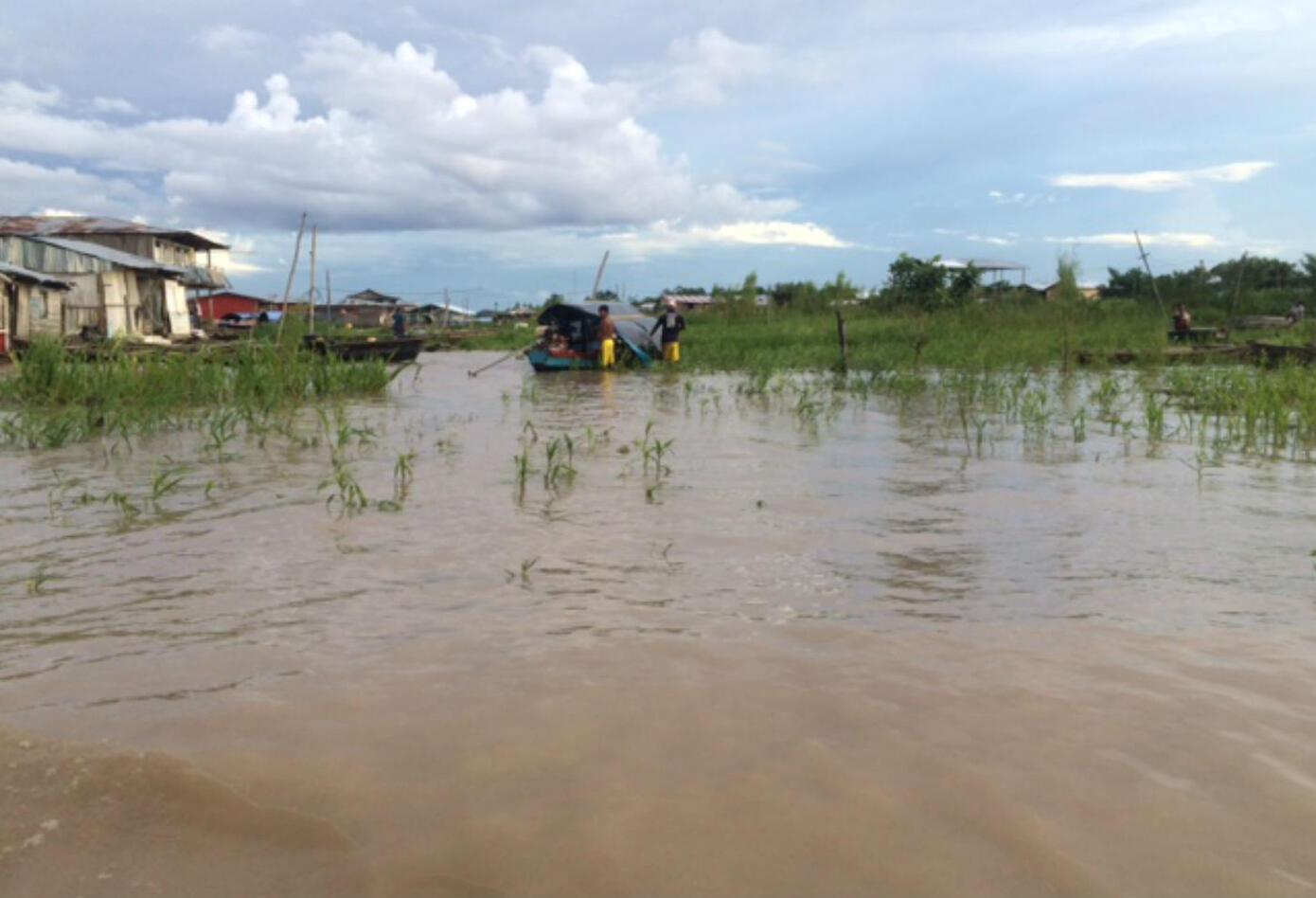 Amazonas en riesgo