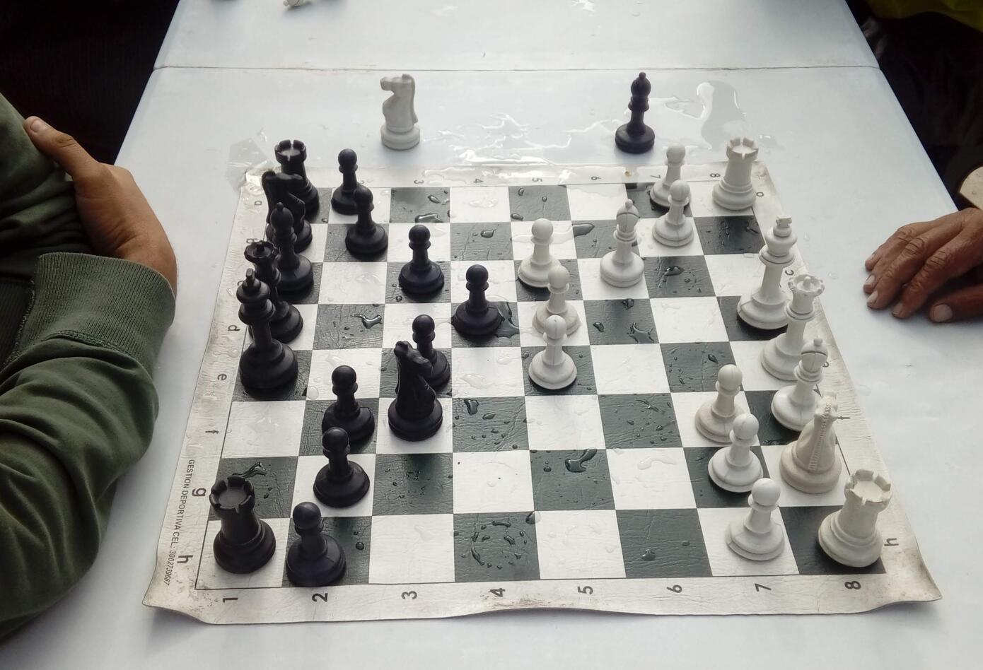 Las fichas de ajedrez cautivan a los amantes de este deporte,